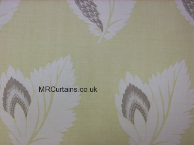 lime/cream curtain