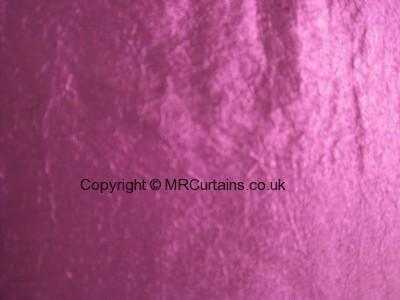 Elderberry curtain