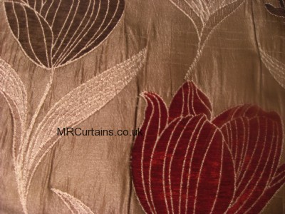 Rouge curtain